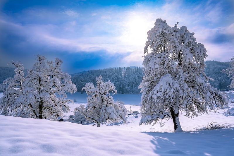 Winterthur-Winter-04348.jpg