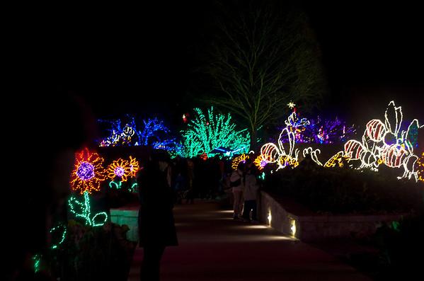 12-30 - Atlanta Botanical Garden Lights - Atlanta, GA