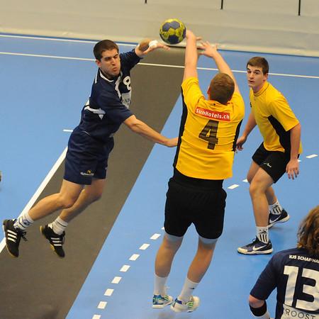 Handball 2011/2012
