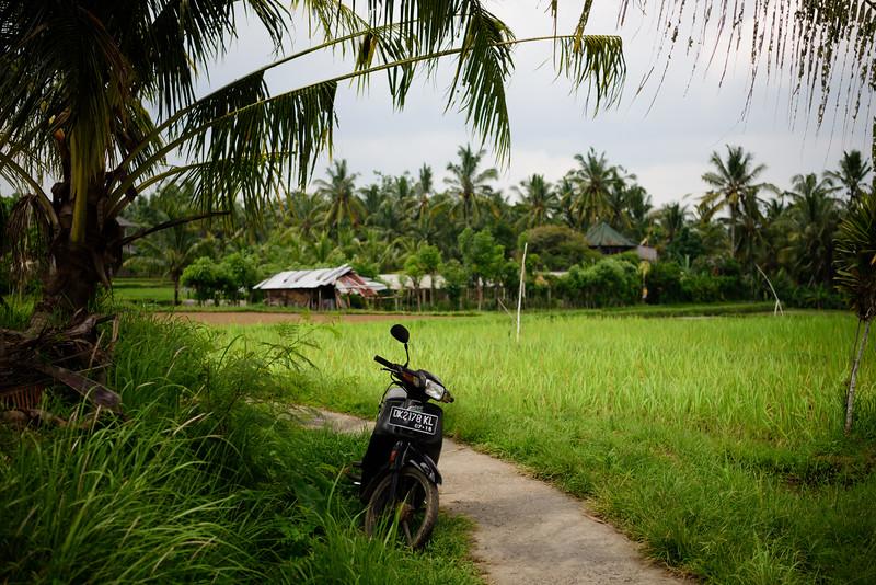 160217 - Bali - 2596.jpg