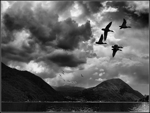 Porlezza (Como - Lugano Lake)