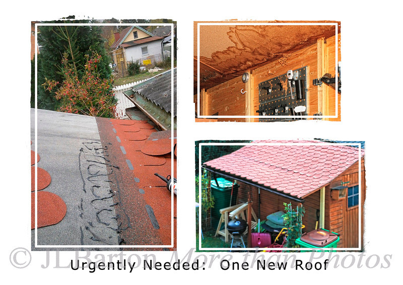 What I've been doing 2011-11-01  Just to report what I've been doing the last two weeks.  I've known since last winter that the garden hut needed a new roof, but put it off.  Now it was urgent.  The original roof was particle board covered only with tar paper.  The winter snows had leaked through and swelled the particle board.  So off to the local Home Depot clone and two weeks later the supports have been strengthened, a new plywood roof has been added with tar paper and tiles.  So now back to taking pictures!