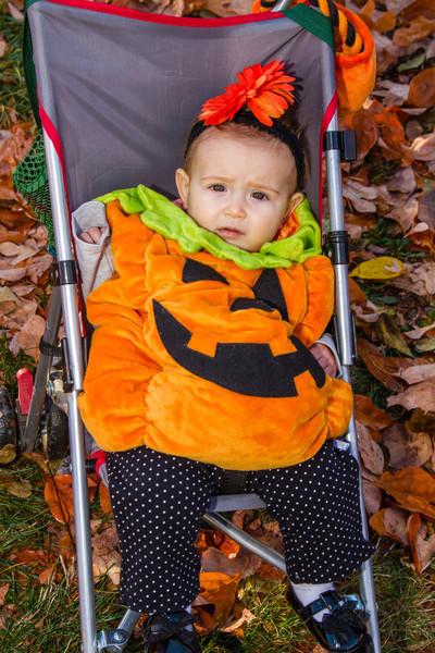 10-31 Mt Kids Halloween-50.jpg