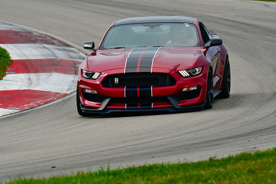 2019 SCCA TNiA Pitt REace Adv Burgandy Mustang Blk Stripes