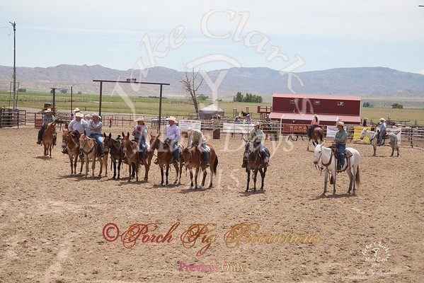 Jake Clarks Mule Days Sorting
