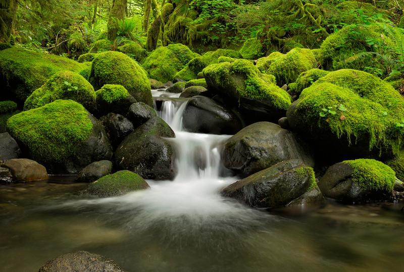 Rukle Creek stream jpg.jpg