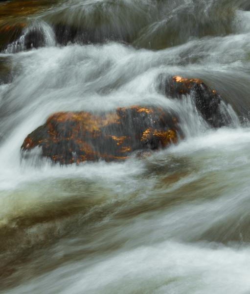 FRESH WATER   114