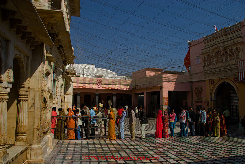 INDIA2010-0206A-123A.jpg