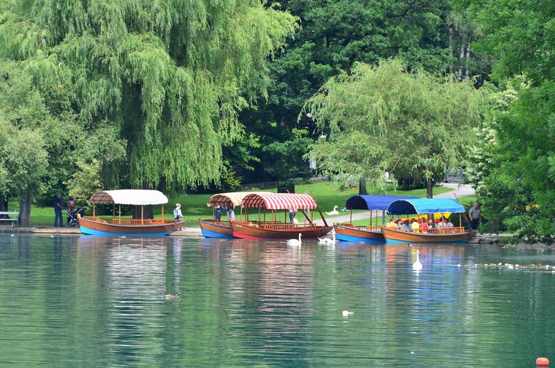 Row Boats. Blejsko jezero, Bled