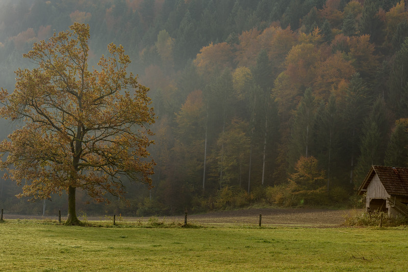 SLOVENIA - LAKE BLED-0253.jpg