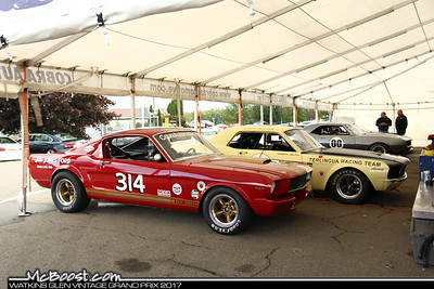 2017 U.S. Vintage Grand Prix, Watkins Glen NY
