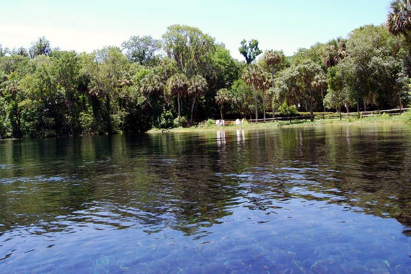 2014 Silver Springs, Florida (10).JPG