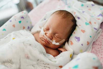 Quincy | Newborn