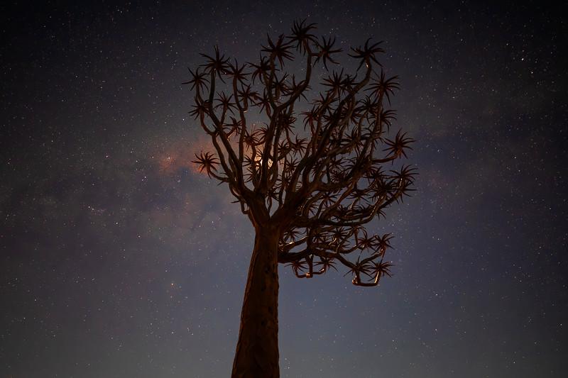 Namibia 69A3703c.jpg