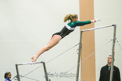 Madison Memorial Gymnastics - Jan 16, 2014