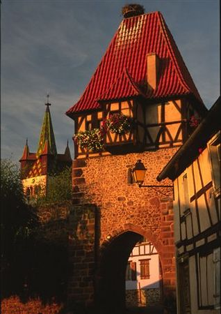 Alsace in Autumn - 2005