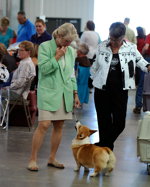 Arapahoe Kennel Club 2010