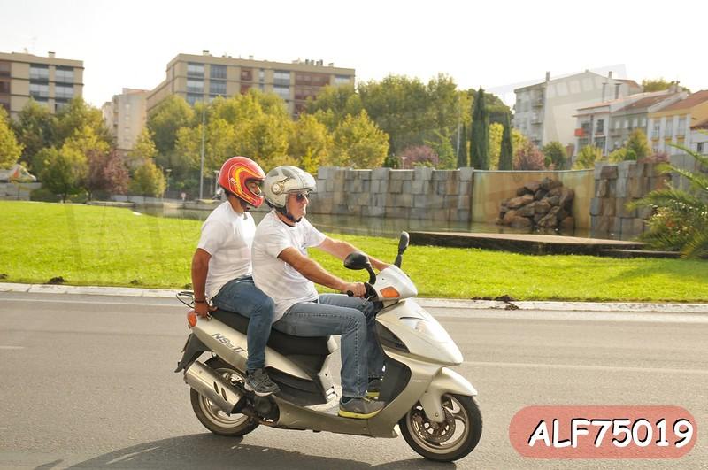 ALF75019.jpg