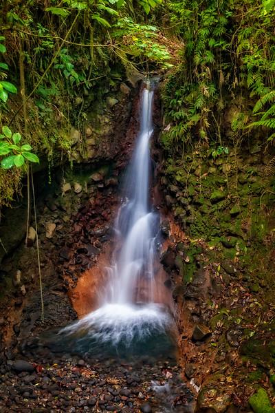 Costa Rica 2016 20160405-13-44-_MG_2662-006-Edit.jpg