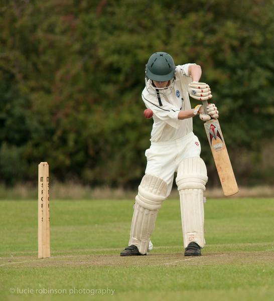 110820 - cricket - 251.jpg