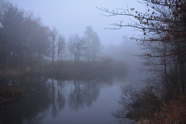 Fog on a pond November 12, 2014