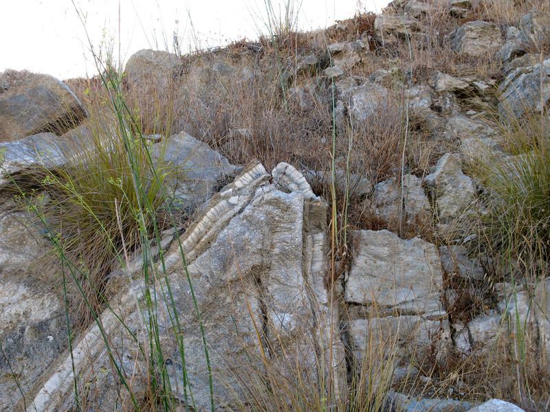 Alabaster folds
