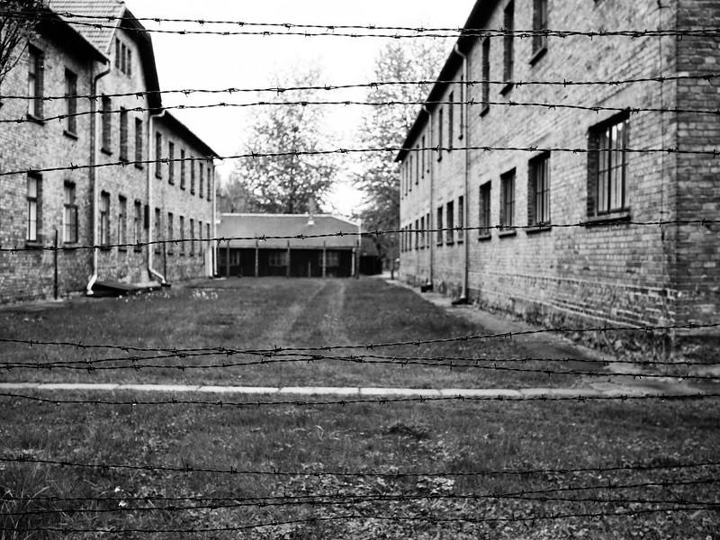 Auschwitz-Birkenau-10.jpg