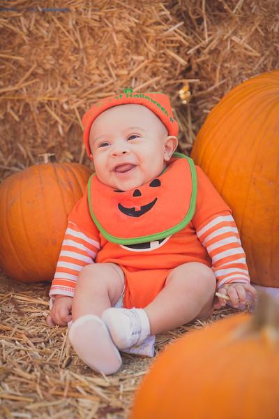 pumpkinpatrick-0006.jpg