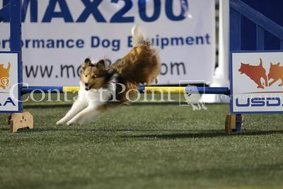 "Cynosport - Performance Speed Jumping Final 12"""
