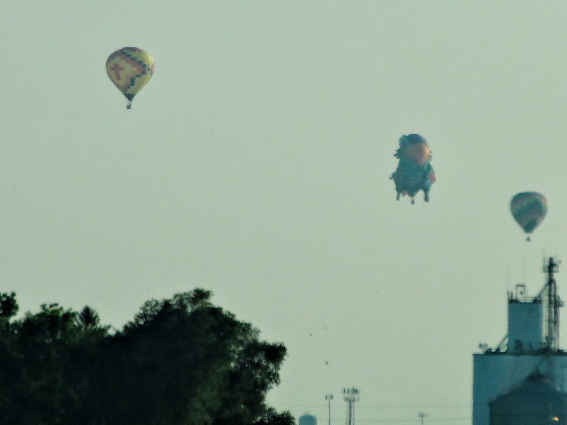 230 Michigan August 2013 - Hot Air Balloons.jpg