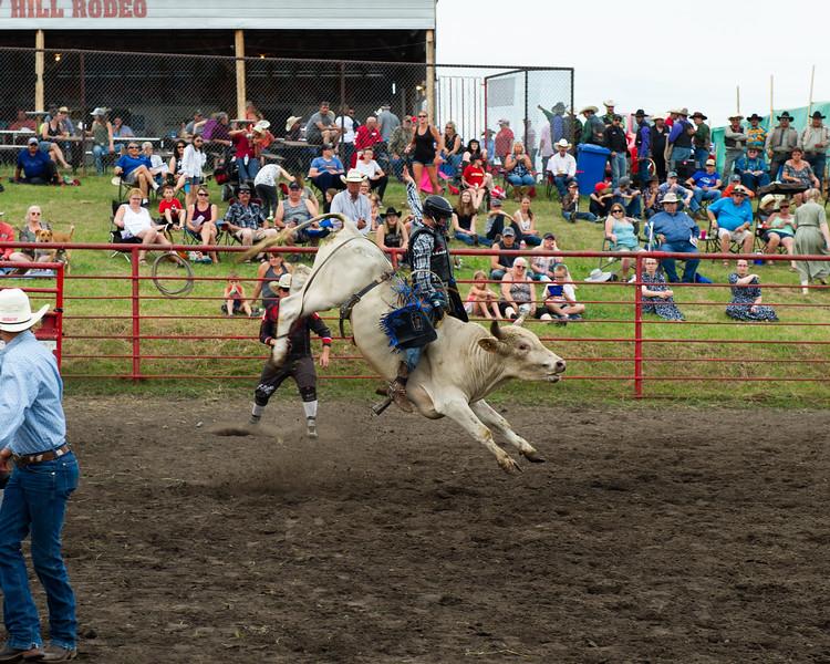 Rodeo_tests-019.jpg