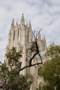 Cathedral: Washington, DC