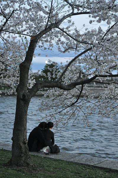 photo walk 4-3-09 230.jpg