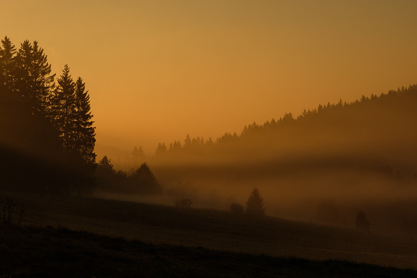 Bohemian Forest Landscapes