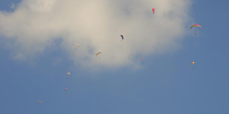 Paragliders - Taken while Paragliding in Pohkara, Nepal