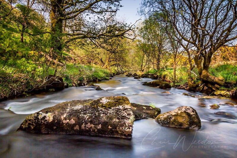 dartmoor bank holiday-41.jpg