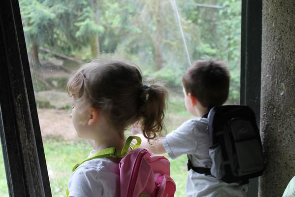 Woodland Park Zoo 2013