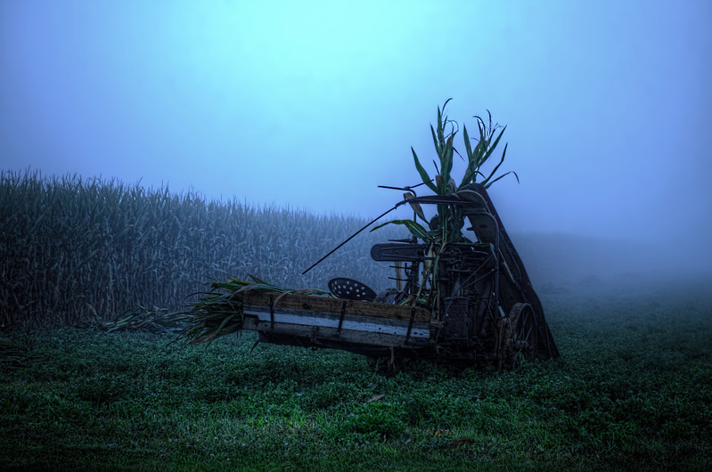 autumn 2014 - amish corn harvester in fog(p).jpg