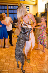 Crystal_Charlie_Wedding-683