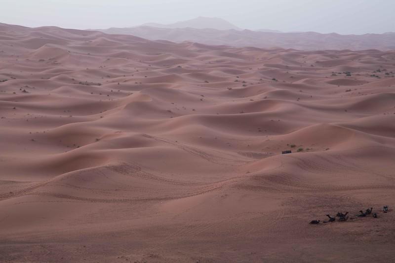 160925-004442-Morocco-0262.jpg
