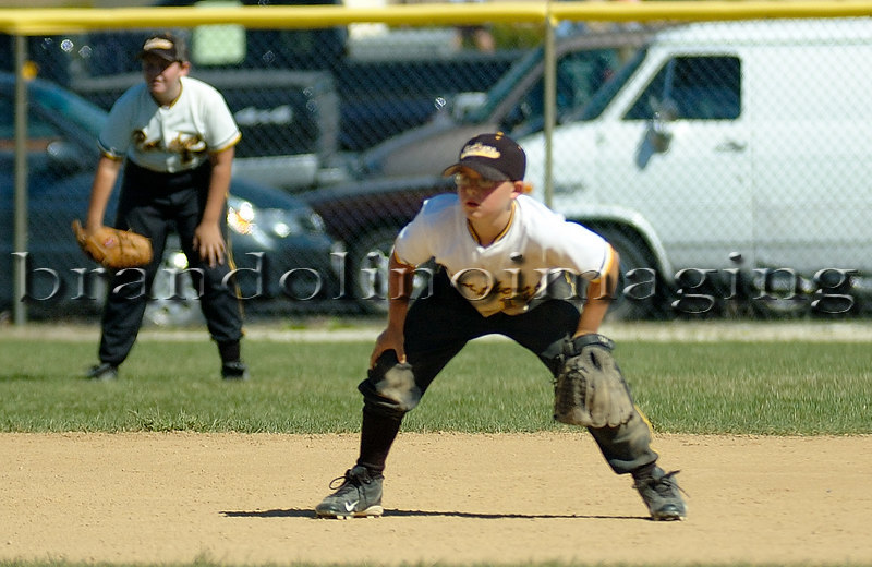 Best of Reed-Custer Middle School Baseball 2005