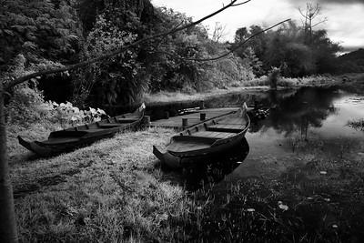 Small Boat in Banteay Srei