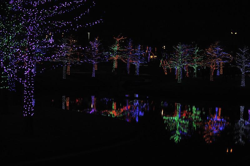 Christmas2019-853.JPG