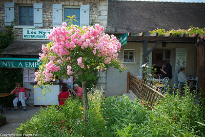 07 - Giverny July 2012