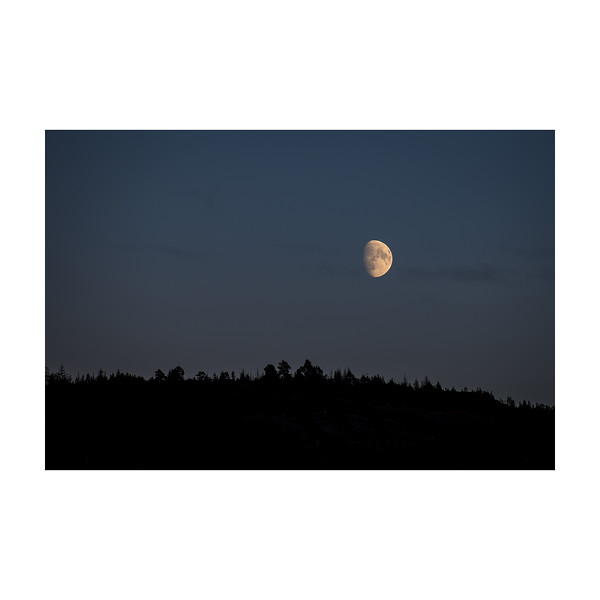 333_Moonrise_10x10.jpg