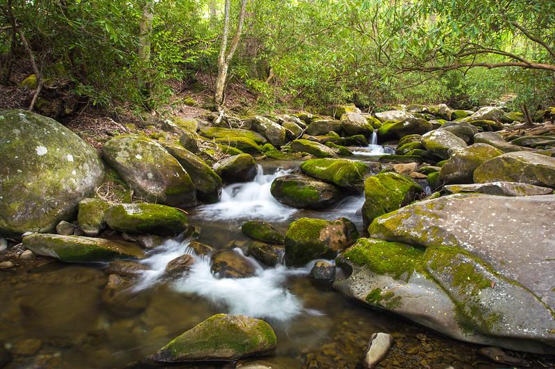 Gabes Mountain Trail