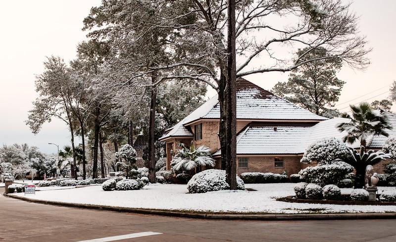 blizzard 2017-4138.jpg