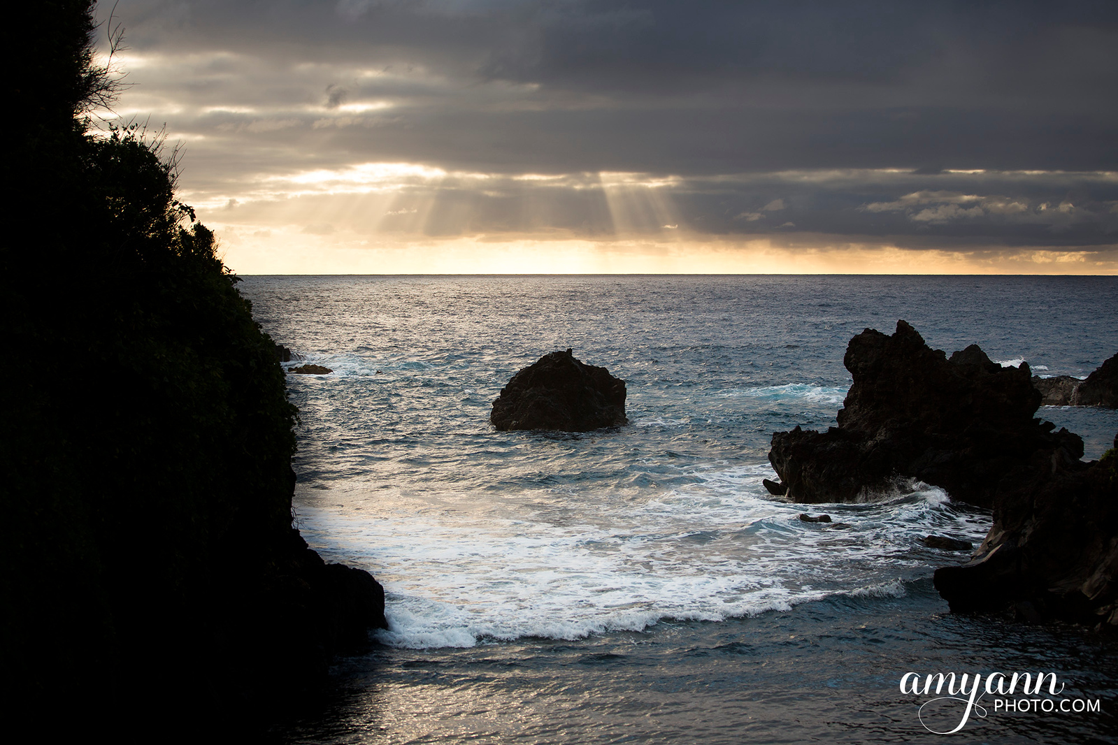 hawaii_amyannphoto_47