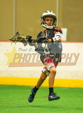 2014-08-02 3D Lacrosse