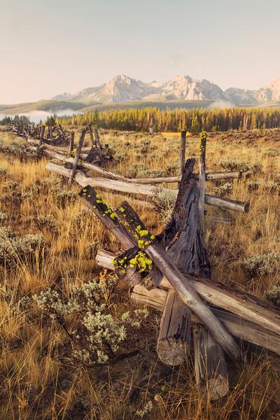 morning sawtooth range.jpg